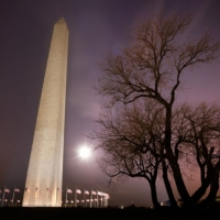 Washington DC Solstice Moon Winter Tree