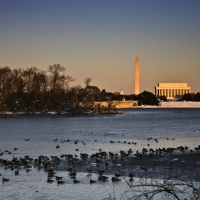 Washington DC Ice