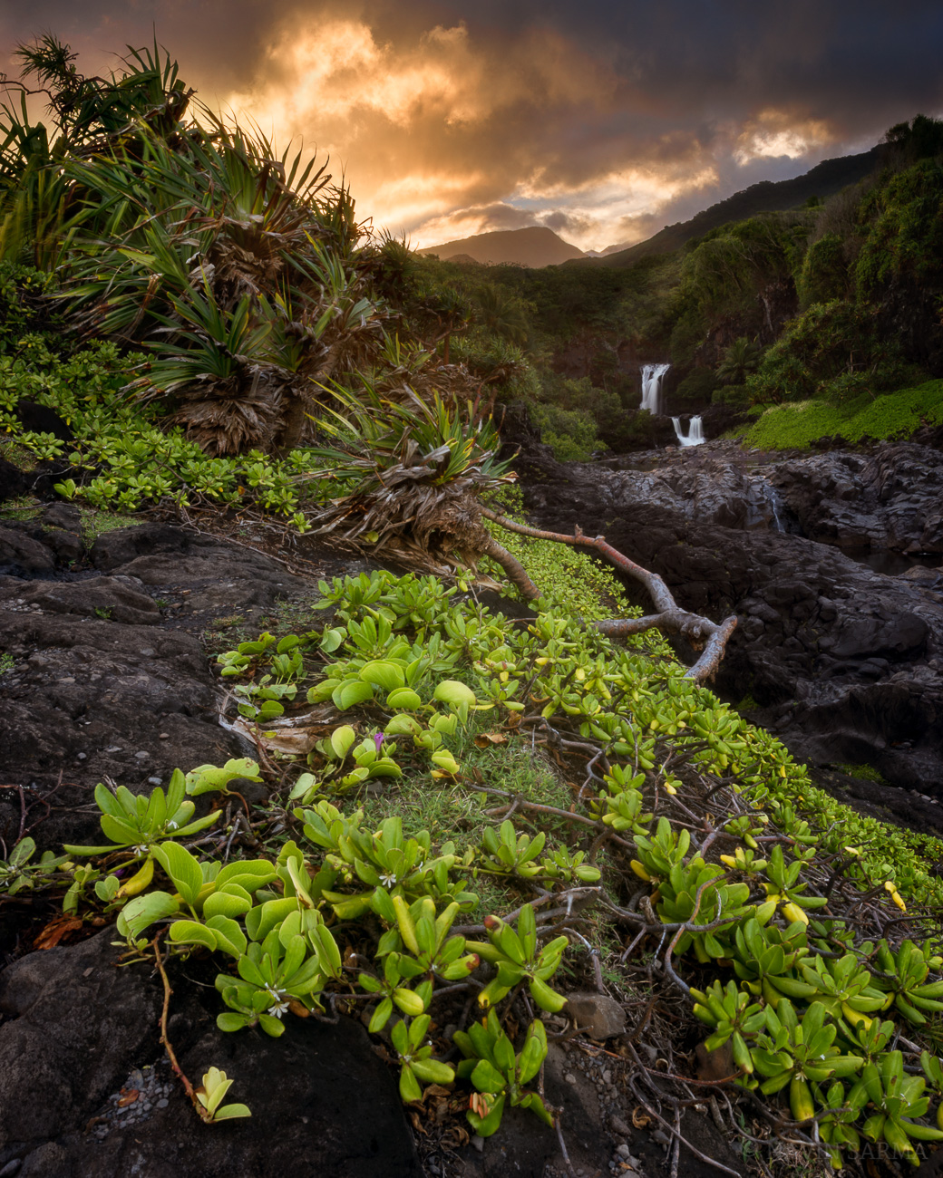 A radiant scene on the east coast of Maui, where the river meets the sea at Oheo Gulch. Maui, Hawaii.