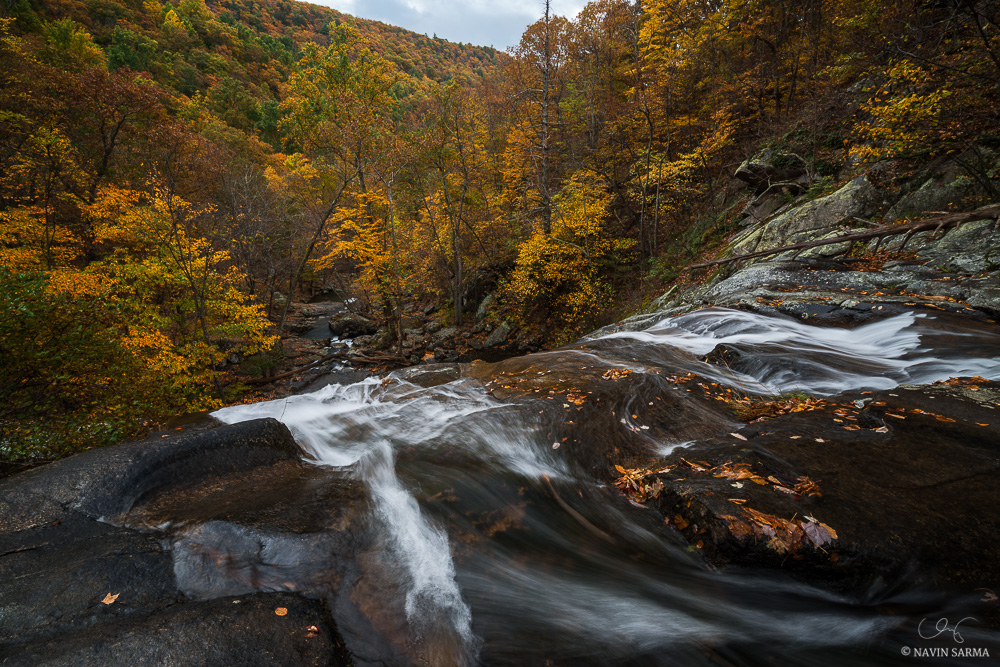 A gorgeous view of fall foliage from the top of Lower Falls of White Oak Canyon, Shenandoah National Park