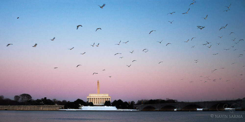 A flock of birds fly over the potomac during a winter sunset in Washington DC