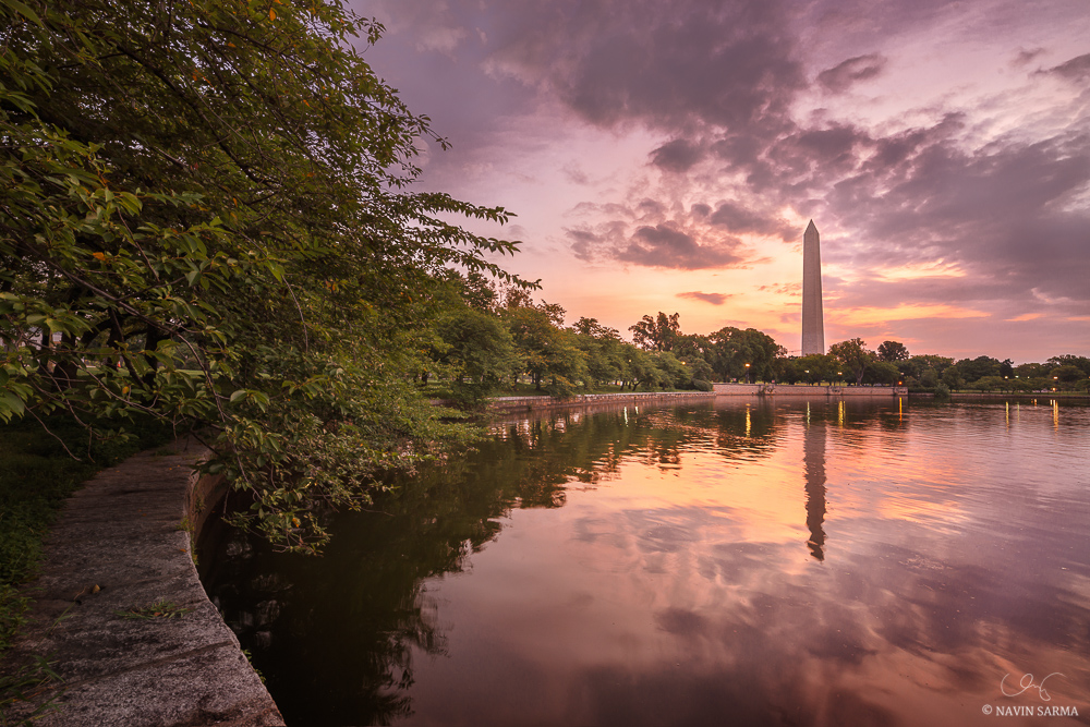 Summer Sunrise on the Tidal Basin