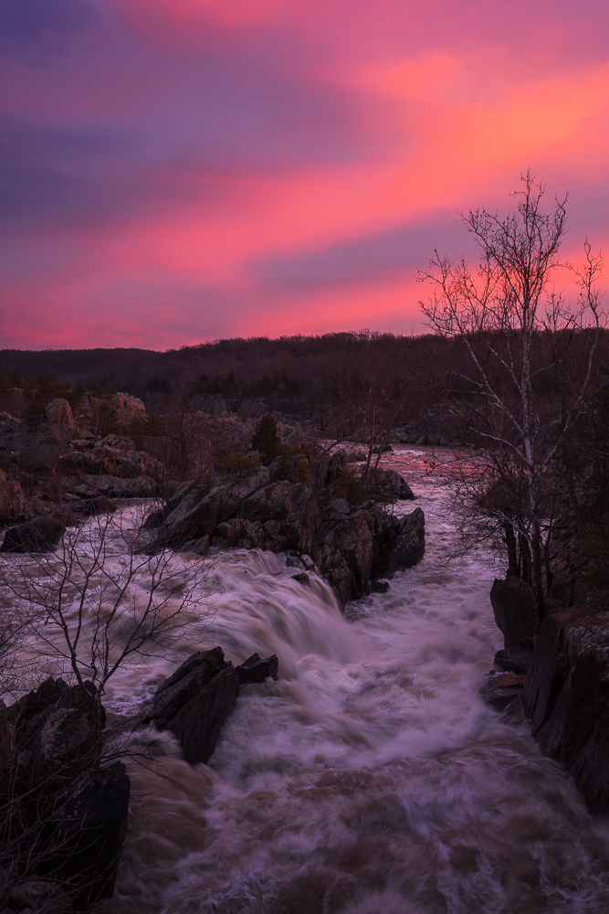 High water levels flow violently through Great Falls during a surprising pink sunset