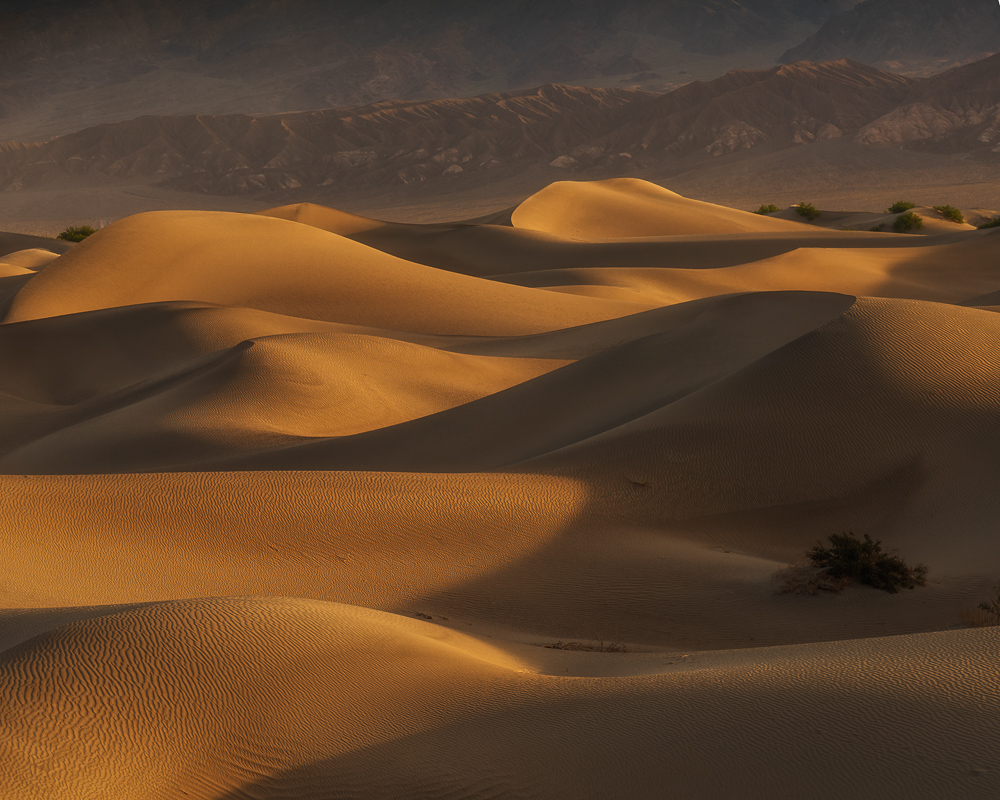 Light, shadow, and shape at Mesquite Flat Sand Dunes