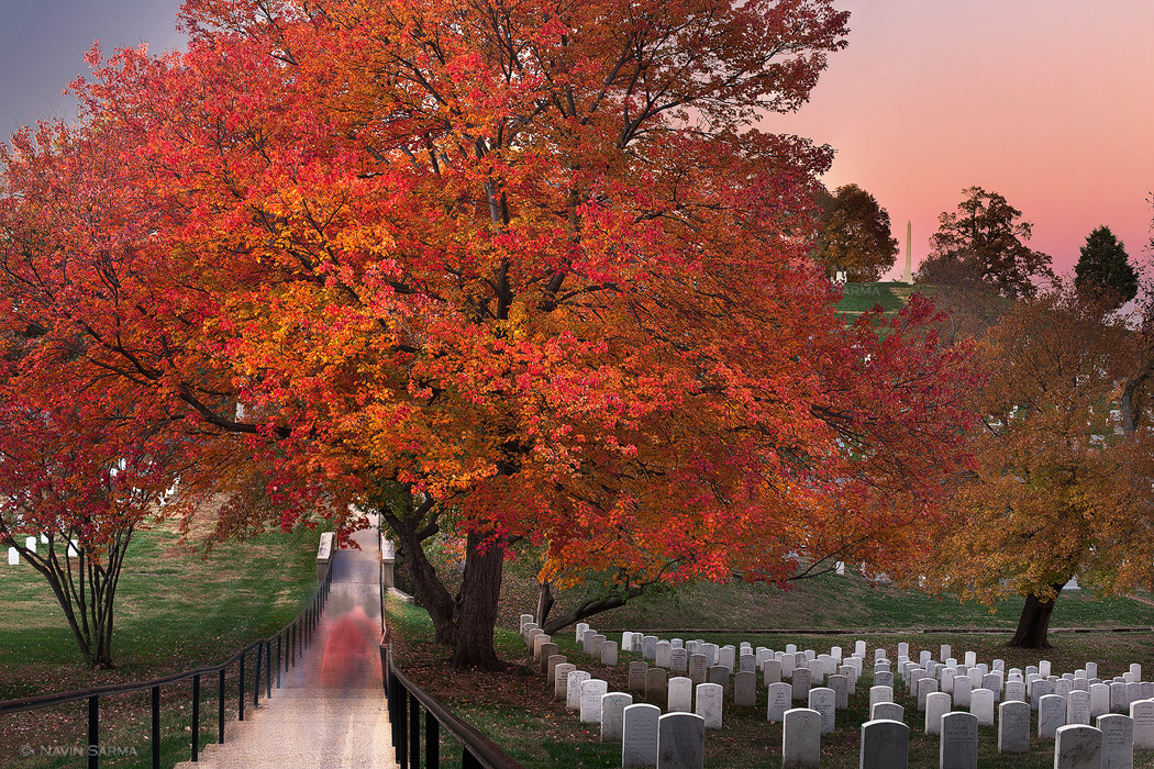 During a fall sunset, vistors walk the passageways of the Arlington Cemetery, and pause with solace. The effect of a long exposure shows visitors streaking along the walkway. Their ghostly figures are a metaphor for the burial grounds: that each one of the headstones represents a person who once stood tall and independent, but has since passed. The separation between the walkway and the grounds echo the differing worlds of the living and the passed. Though darkness has fallen on the scene and on what we can understand, the transition to the vivid pink sky, behind a high hill of ornate memorials, suggests optimism in the afterlife.