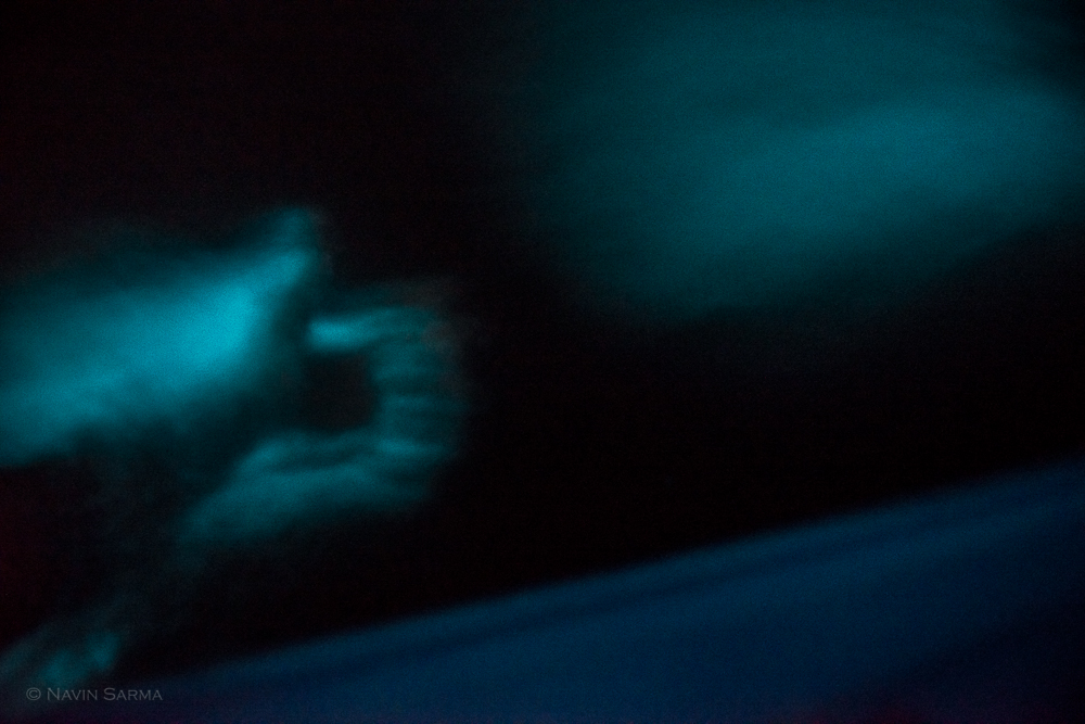 Bioluminescence from tiny flagella shines as my hand and our kayak disturbs the waters of Laguna Grande, Puerto Rico