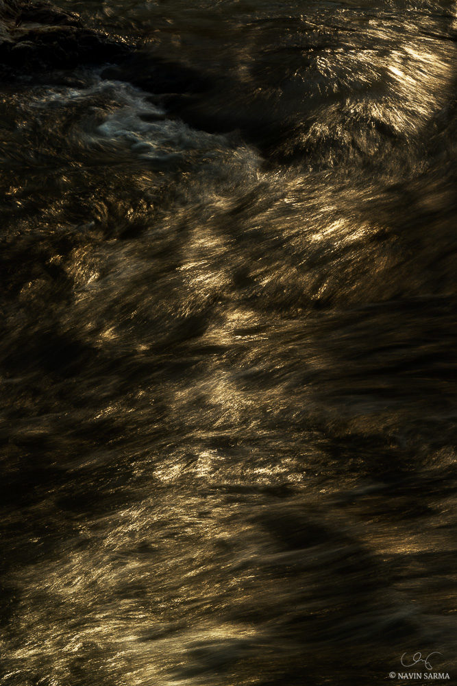 Late evening sun streams through trees and rock and highlights water as it picks up speed in Great Falls, MD