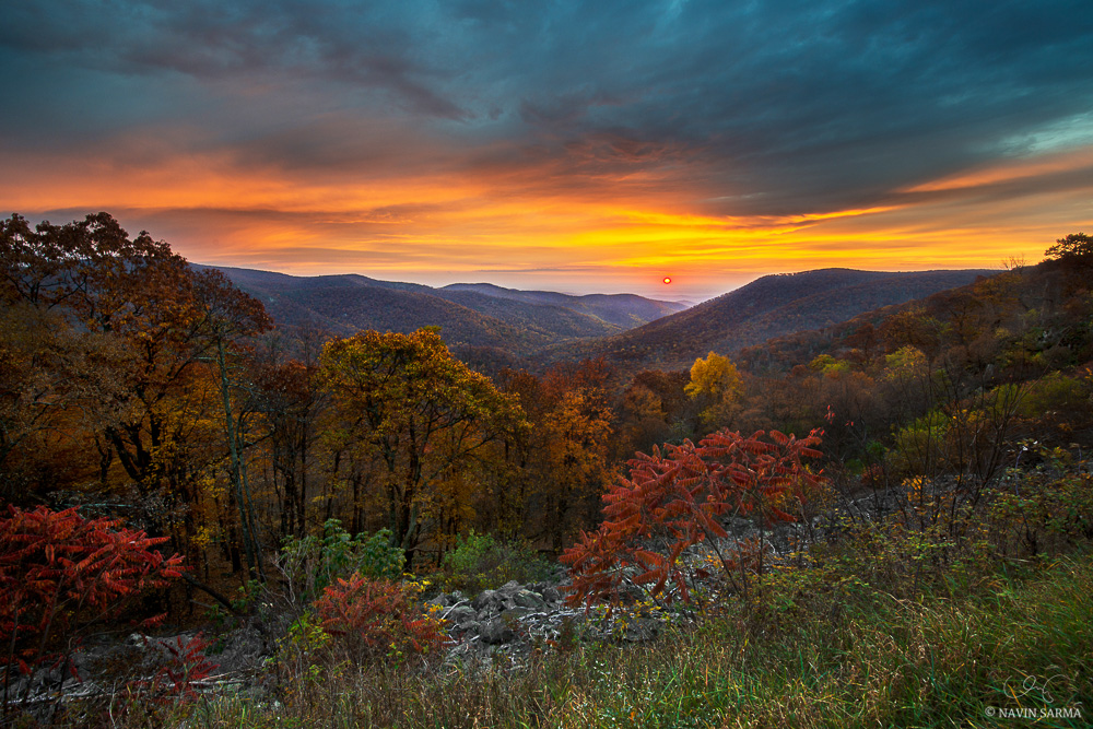 Fall foliage is abound during a glorious and classic Shenandoah National Park sunrise, with the diffused sun filling orange in the hazy blue rolling hills.