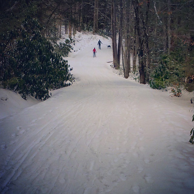 Cross Country Skiing on the Lindy Trail
