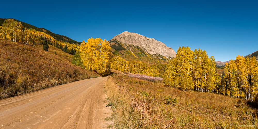 Aspens being to turn yellow in the roads near Crested Butte