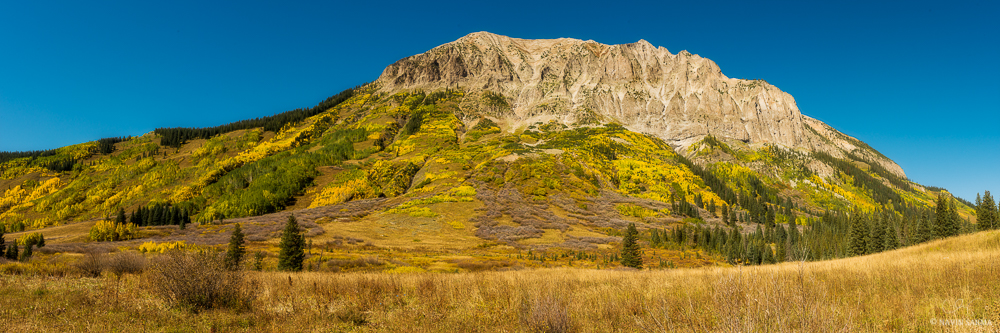 High peaks, yellow aspens, and blue skies create a bold image near Crested Butte, Colorado