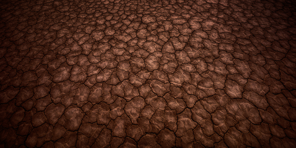 The endless cracks in the mud at Panamint Playa resemble lizard scales