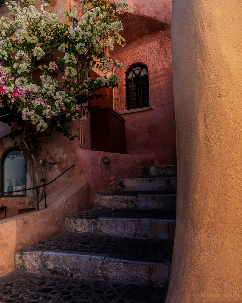 An unassuming corner is adorned with vibrant orange paint and blooming, flowering trees