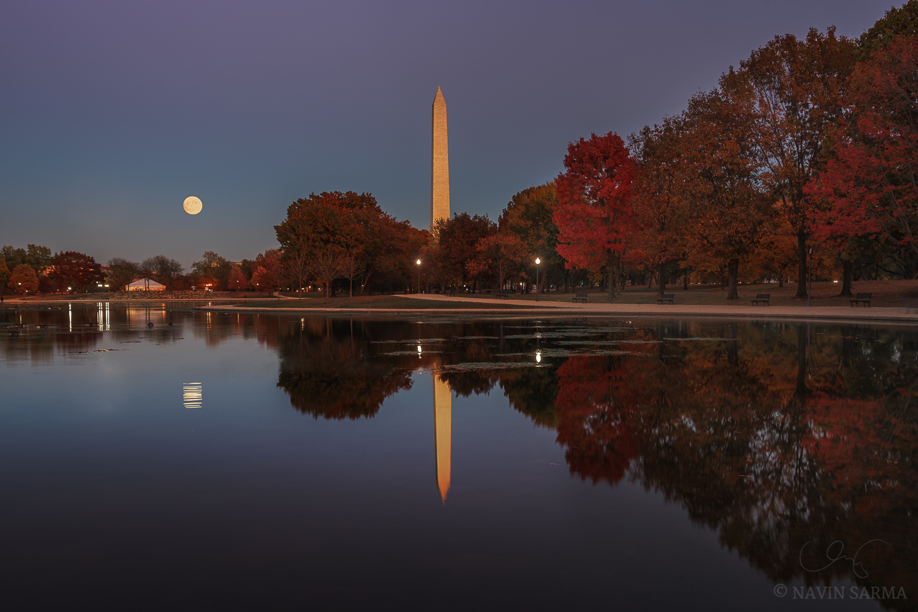 The stunning supermoon rises over a cloudless pink and blue sky at the Constitution Gardens of Washington DC