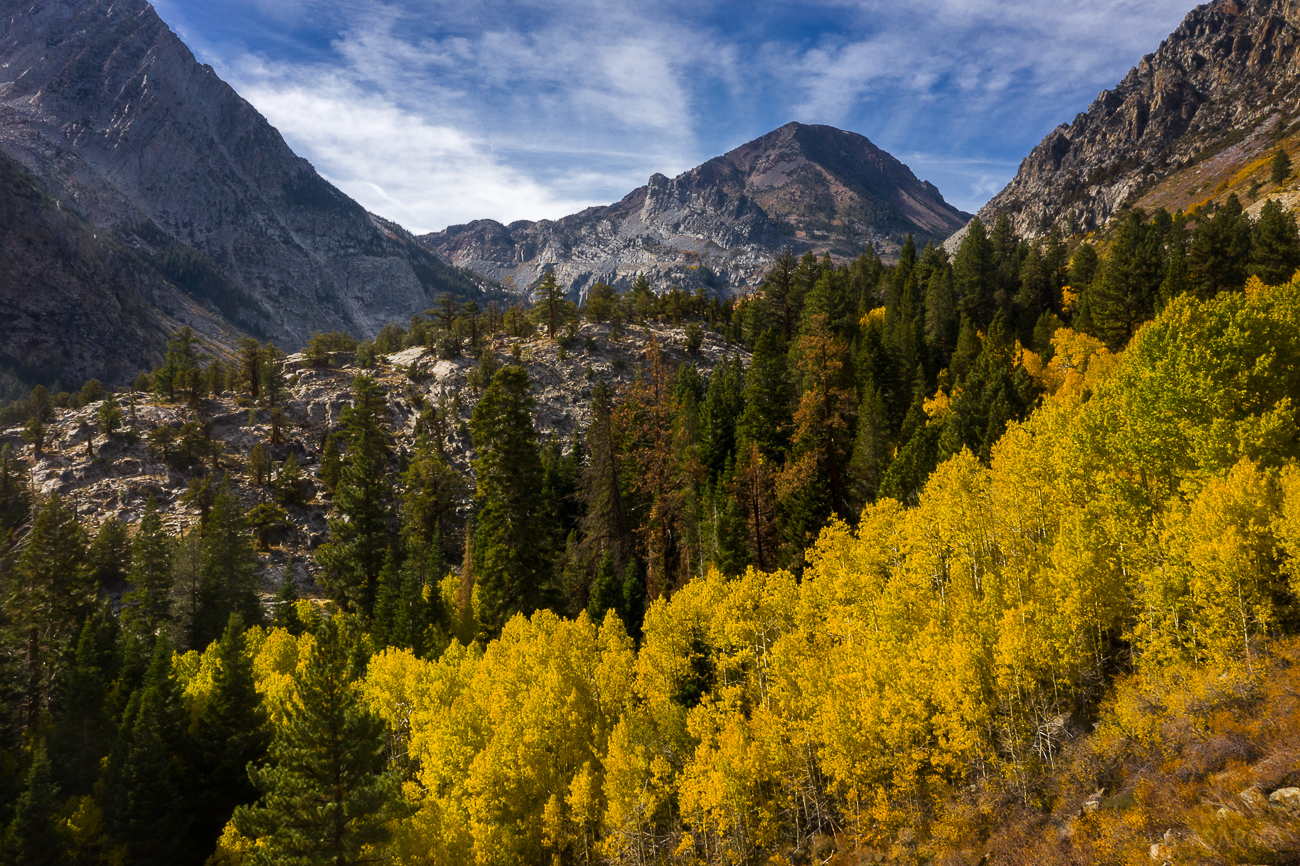 An elevated view into the valley exposes layers of aspens, pines, and granite rock in late morning light